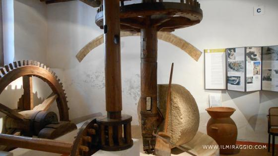 MOO Museo dell'Oliva e dell'Olio