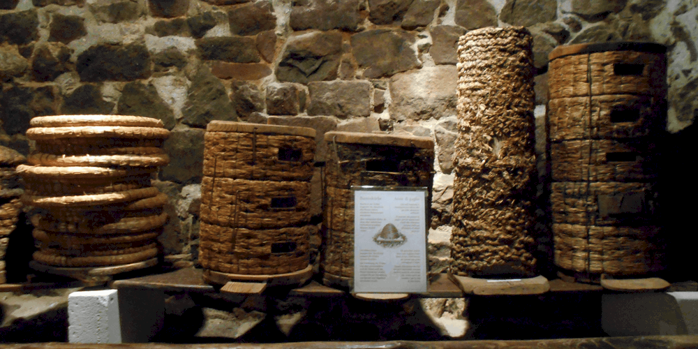 Alveari al Museo dell'Apicolutura trekking altopiano renon