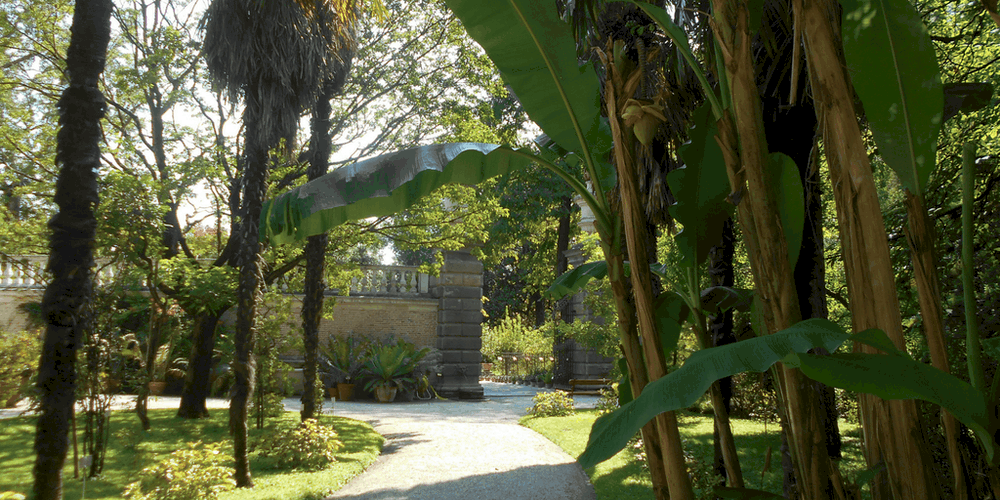 Una parte del giardino antico