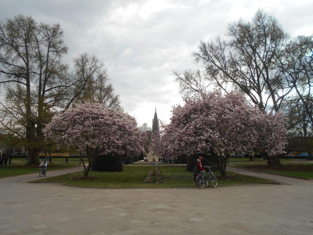 I giardini della piazza della Repubblica