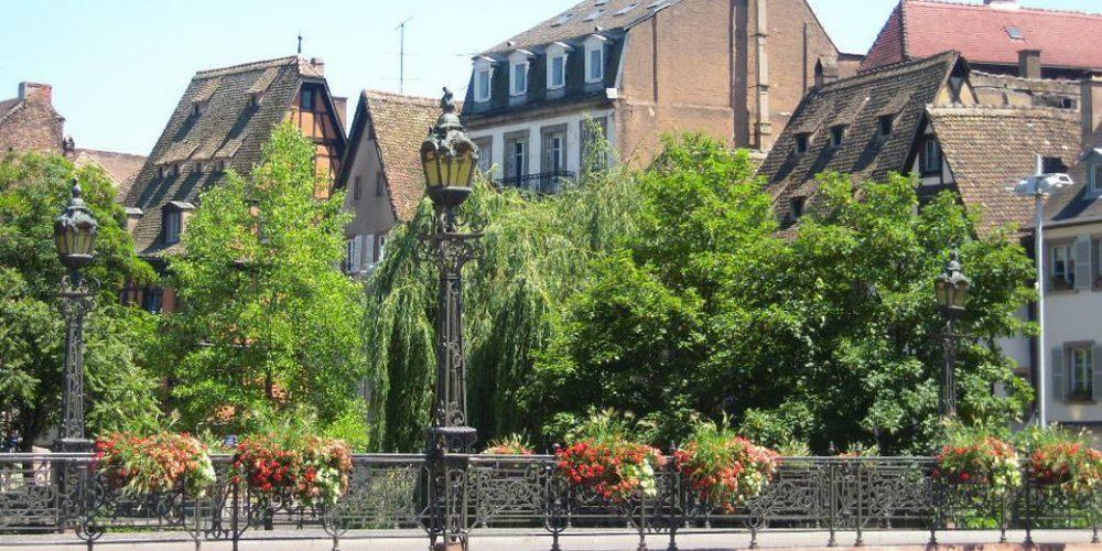 Il verde di Strasburgo