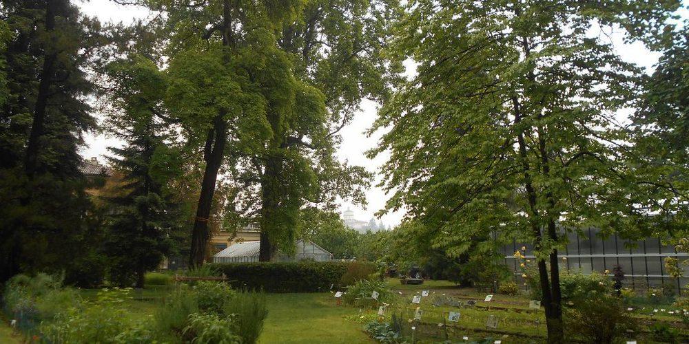 Orto Botanico al  parco del Valentino